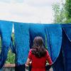 爱蓝染的龙猫